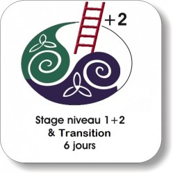 Niveau 1 + 2 + Transition